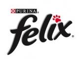 Logo Felix.jpg