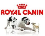 Logo Royal Canin Pes