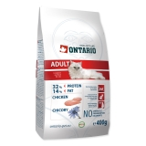 Ontario Cat Adult