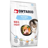 Ontario Cat Kitten Salmon