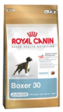 Royal Canin Maxi Boxer Junior