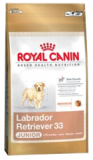 Royal Canin Maxi Labrador Junior