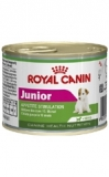 Royal Canin Konz.Junior